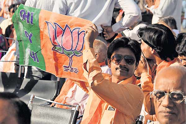 A BJP activist holds up the party flag.