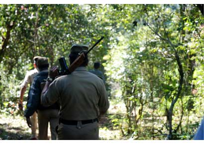 Members of the anti-Naxal squad search for a woman Naxal, who escaped during an gunbattle in the Mavena Hola forest range of Chikmagalur district in Karnataka on November 19, 2008.