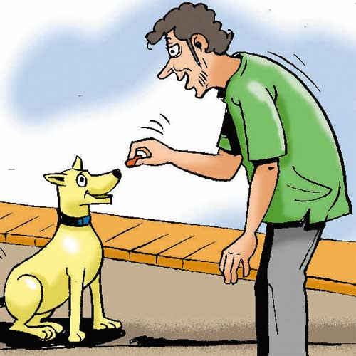 how to become a dog trainer in india