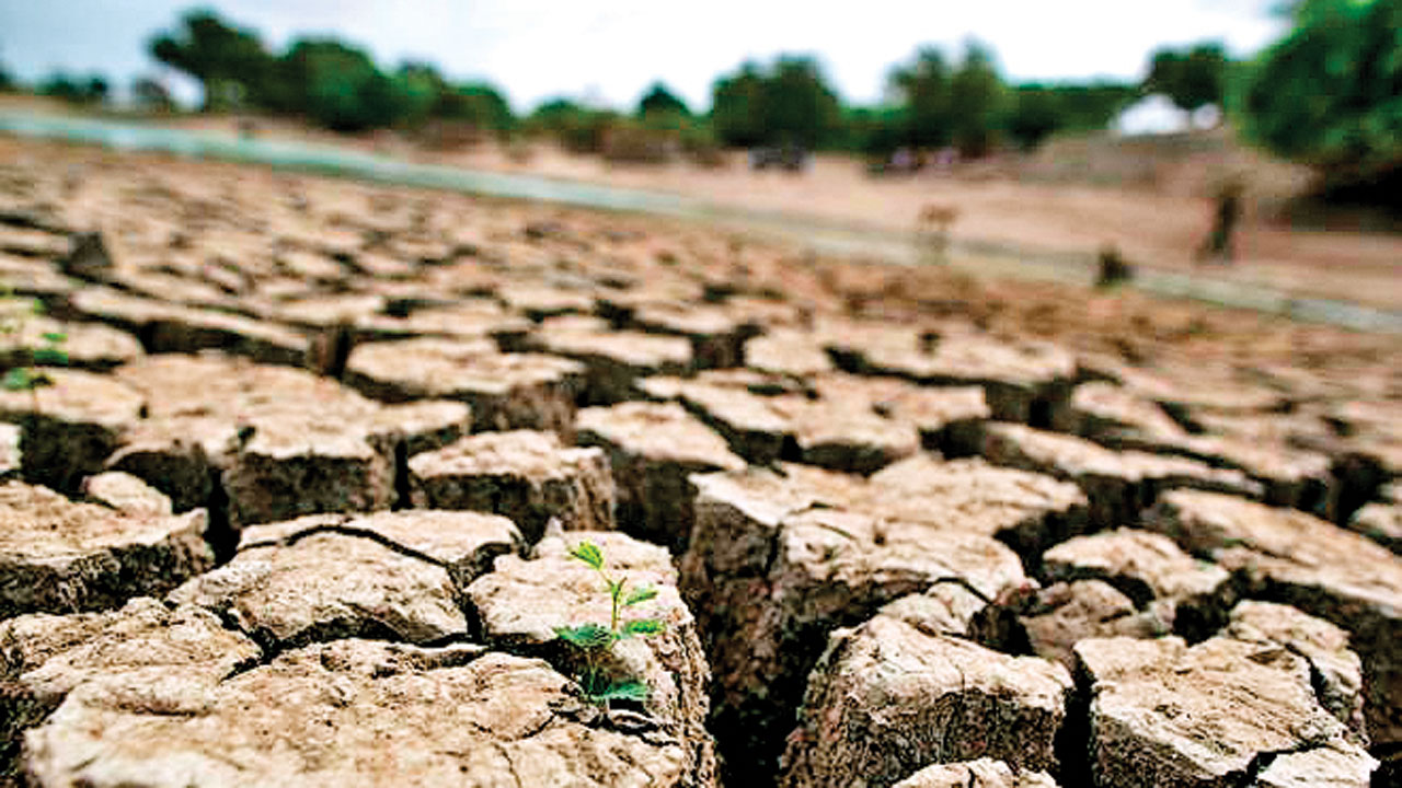 DNA Edit: Dry states - Maha, Guj show why big dam policy has not worked