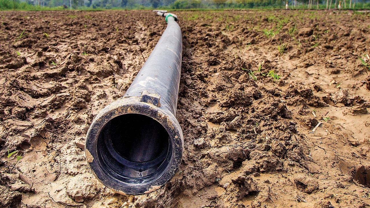 Maharashtra: Govt mum on irrigation, the weakest link in agriculture