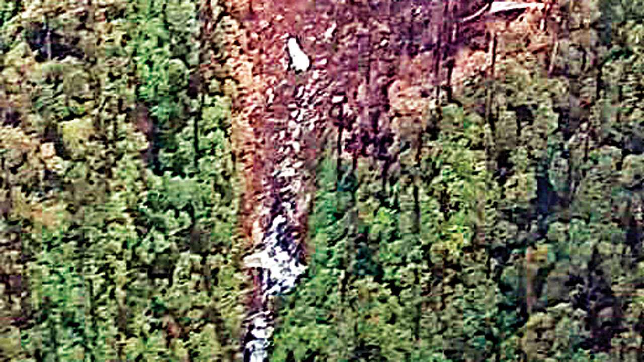 IAF airlifts 15-member rescue team from AN-32 accident site in Arunachal Pradesh