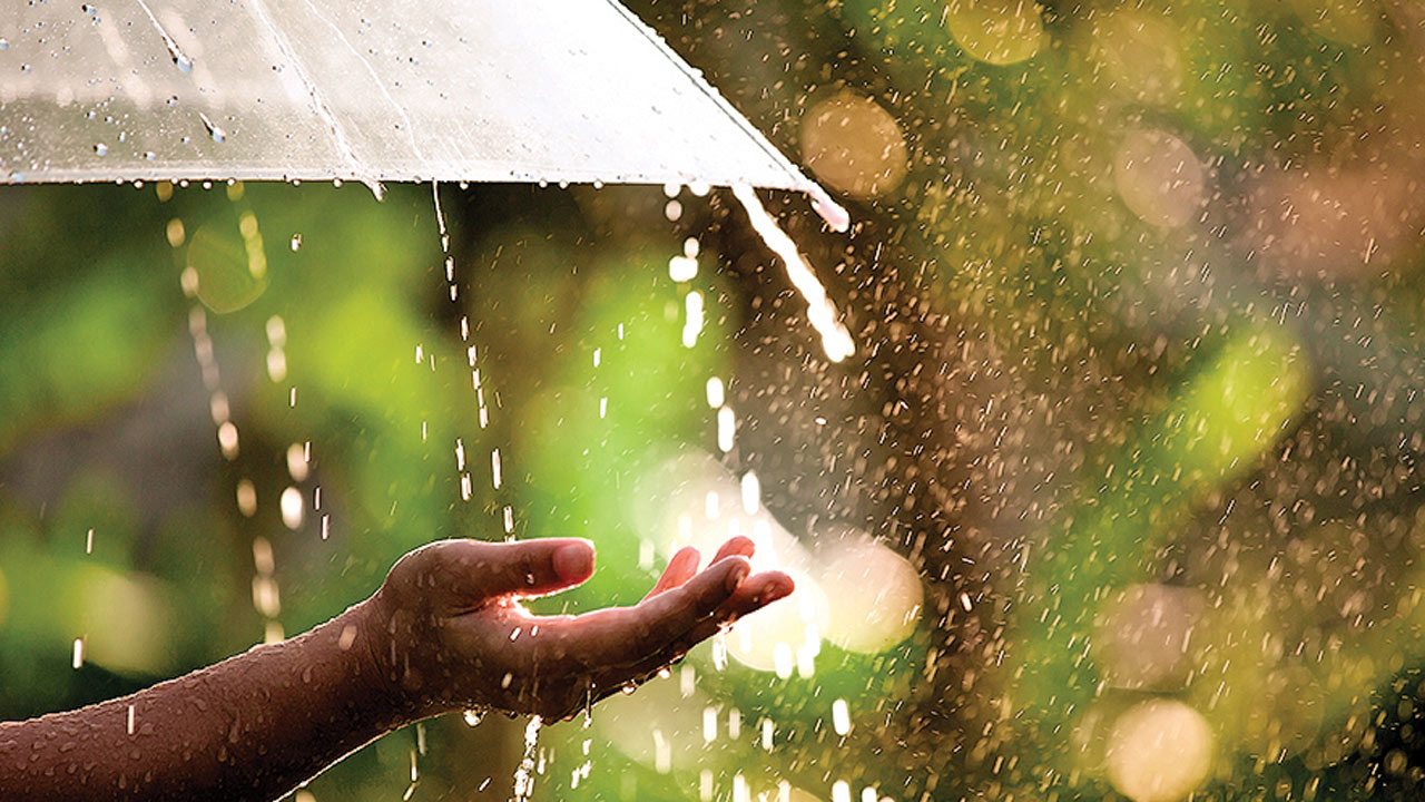 Ayurvedic umbrella: A mantra to monsoon well-being