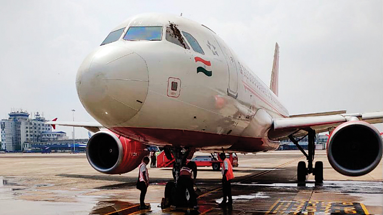 Air India to ground control: There is a beehive at the cockpit window