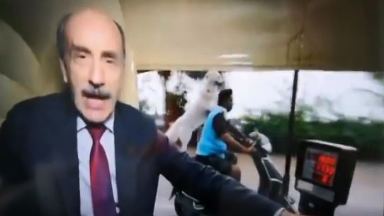 'This happens only in India': Dog riding pillion on bike photobombs BBC show; gets hilarious response from netizens