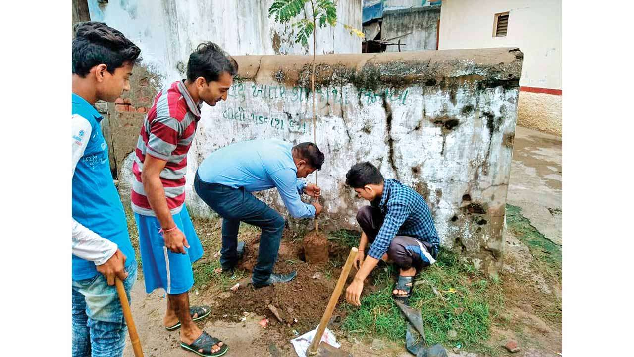 This village gives 30% tax relief for planting saplings in Gujarat