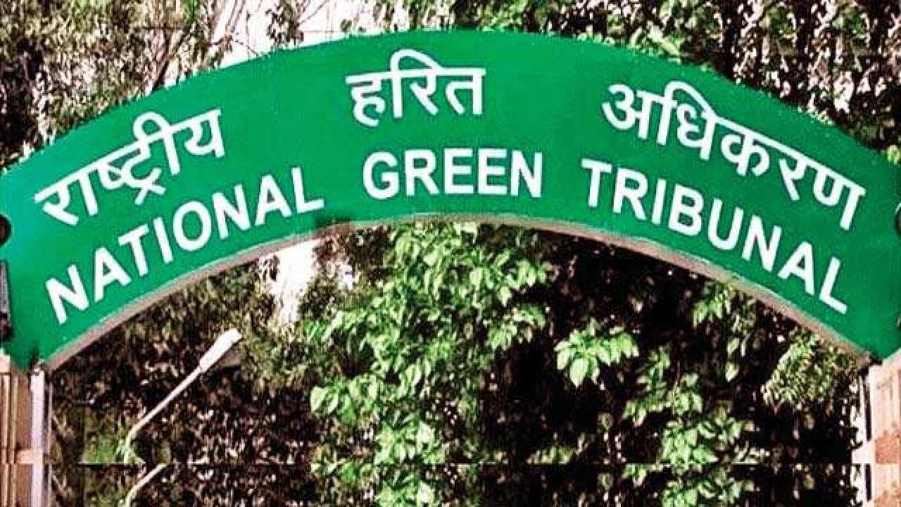 Image result for ngt delhi