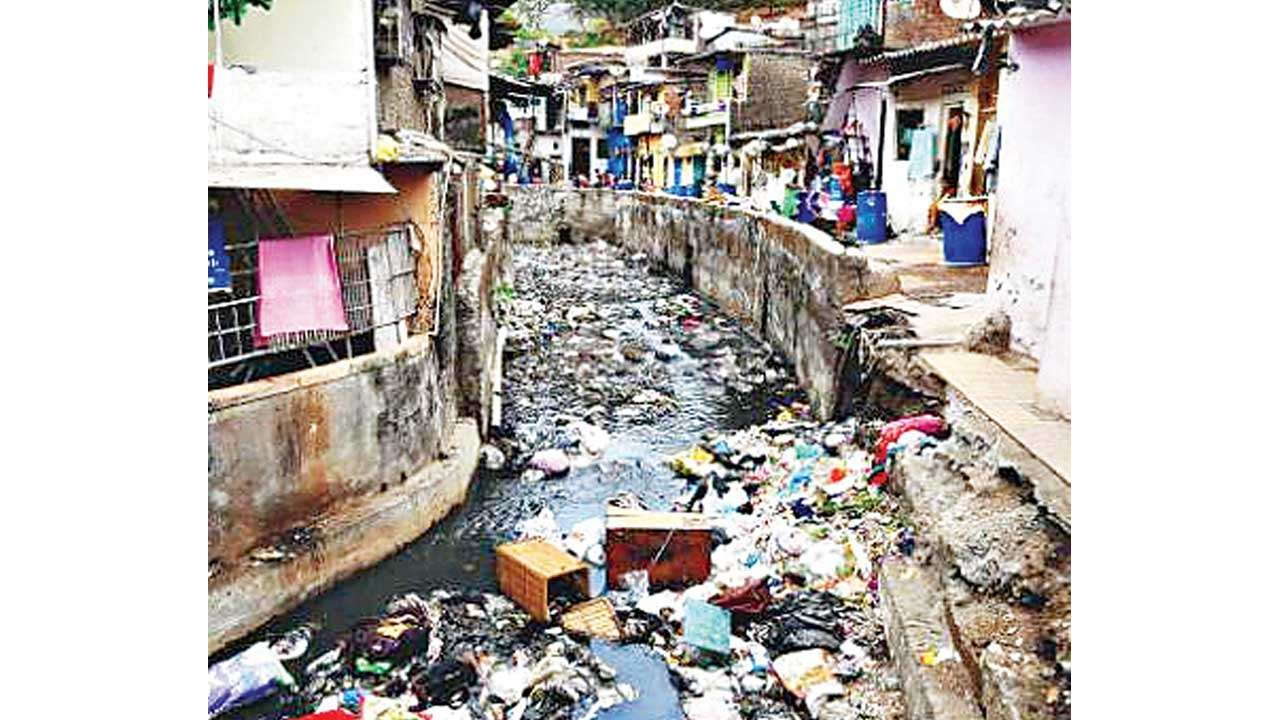 DNA RAIN CHECK: Thane locals mostly stay above water, want pest control done
