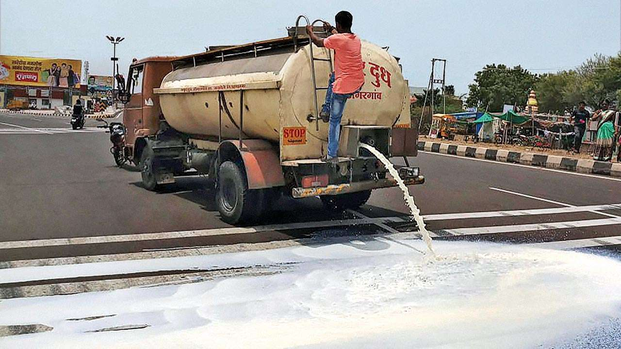 Maharashtra government sets terms and conditions to avail milk subsidy