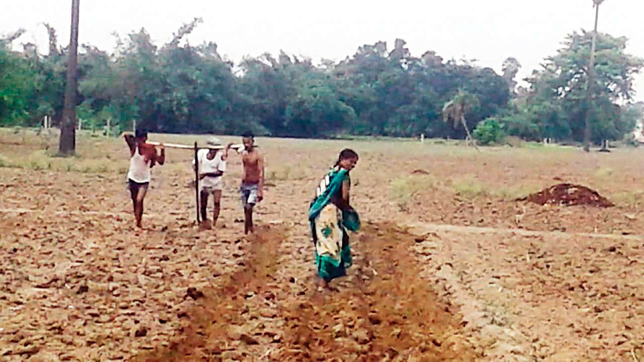 Image result for Bihar farmer uses sons to plough field