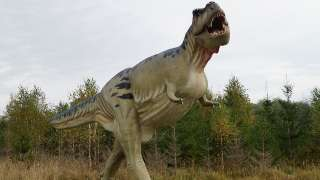 T. Rex could not stick out its tongue, shows new research