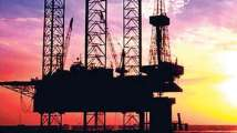 Govt defers oil, gas field auction by a month