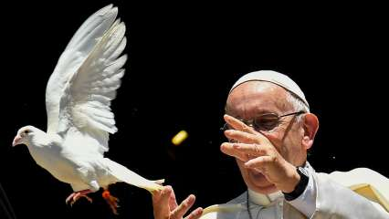 Pope Francis decries